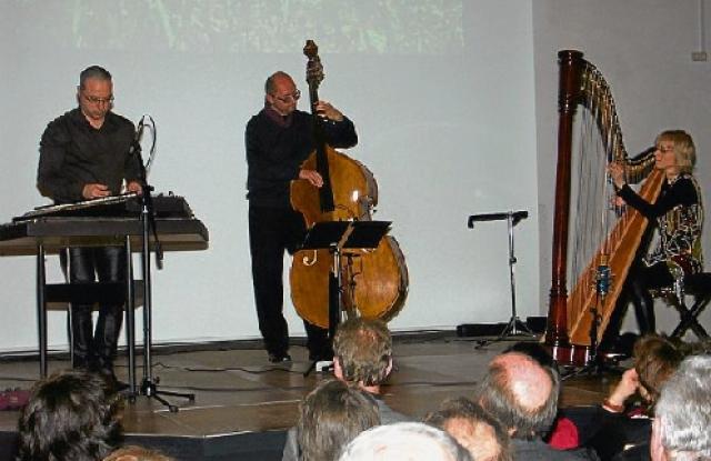 Temperate Kontra Bass Bass Double Bass Saiten String Saiten Old Neu New String Musical Instruments & Gear